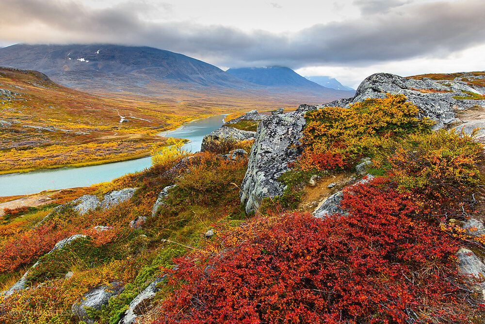Lappland - Herbst