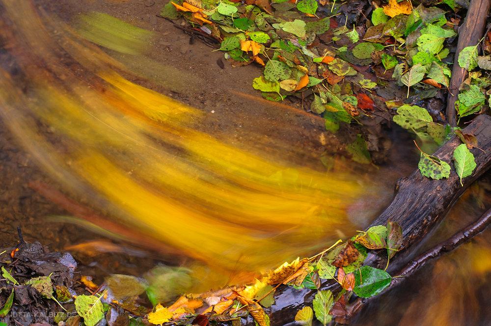 """""""Herbst im Fluss"""""""