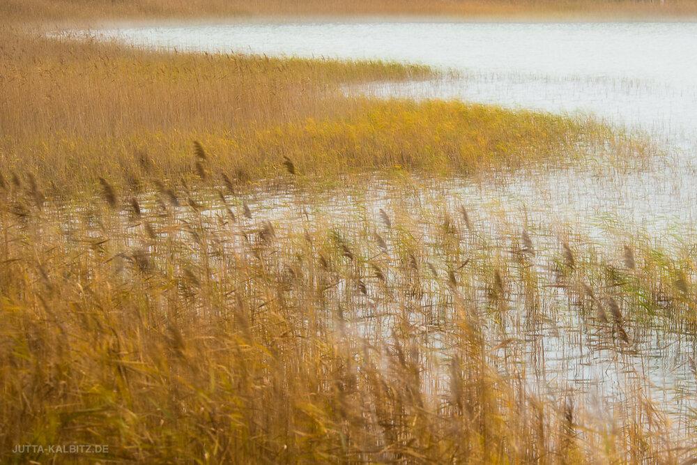 """""""Herbst am See"""" (kamerainterne Doppelbelichtung)"""