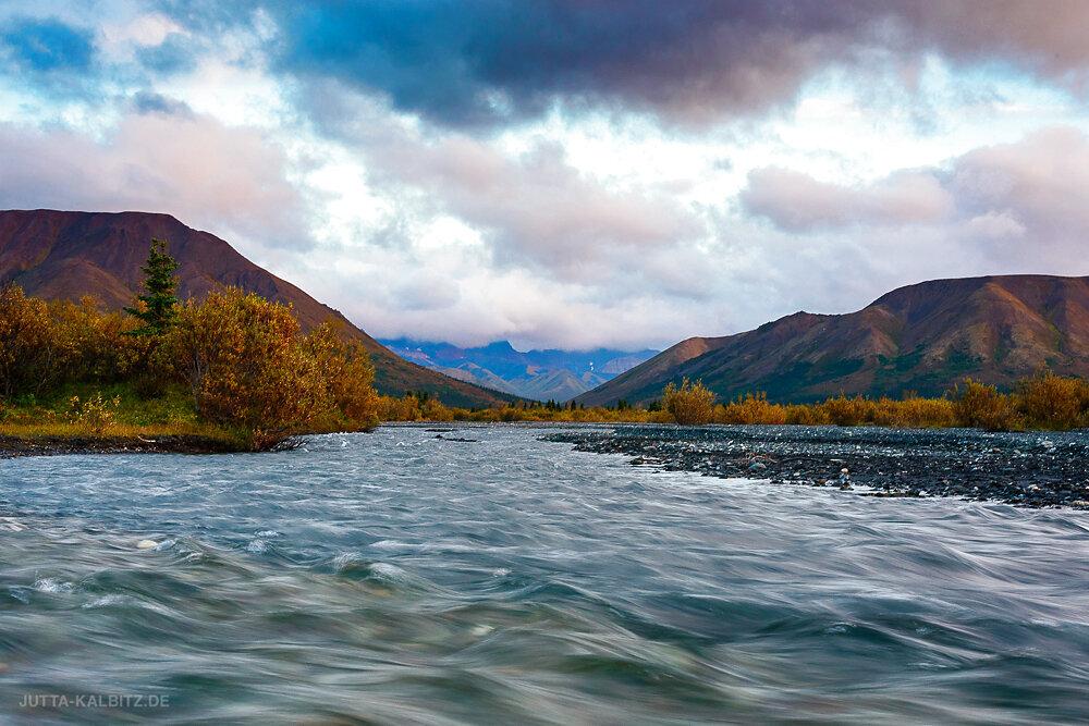 Savage River - Denali Nationalpark