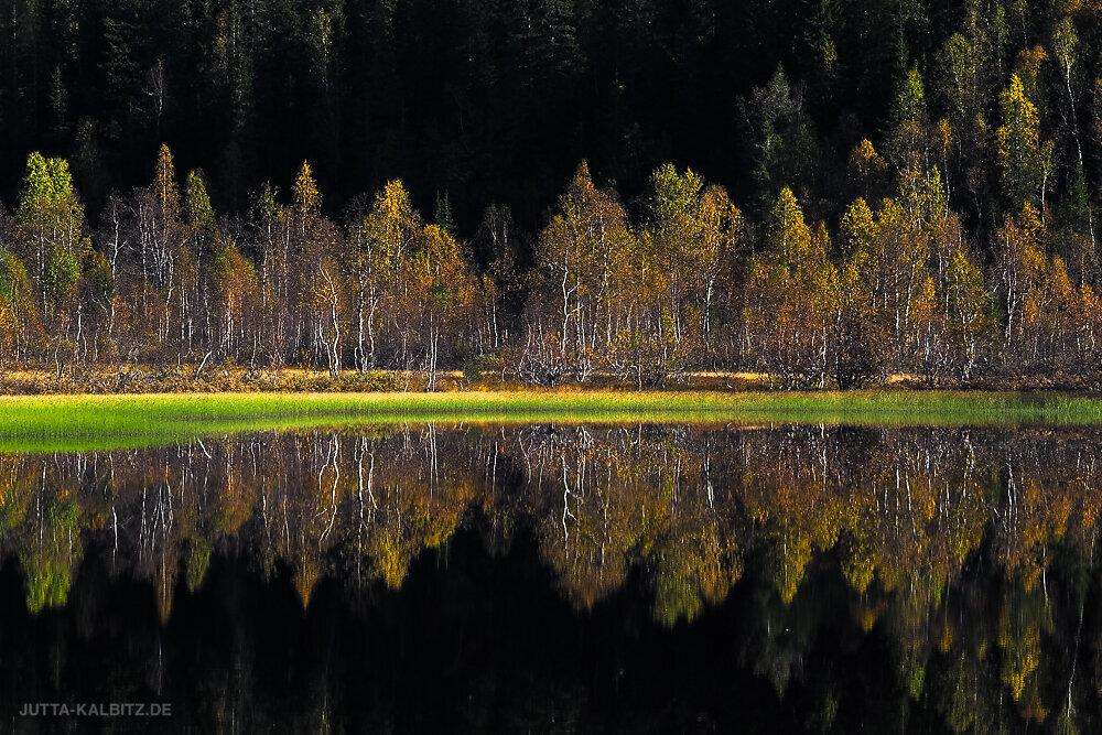 Norwegen-2019-2.JPG