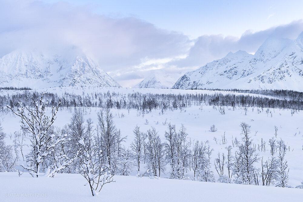 Blog-Norwegen-2020-3.JPG