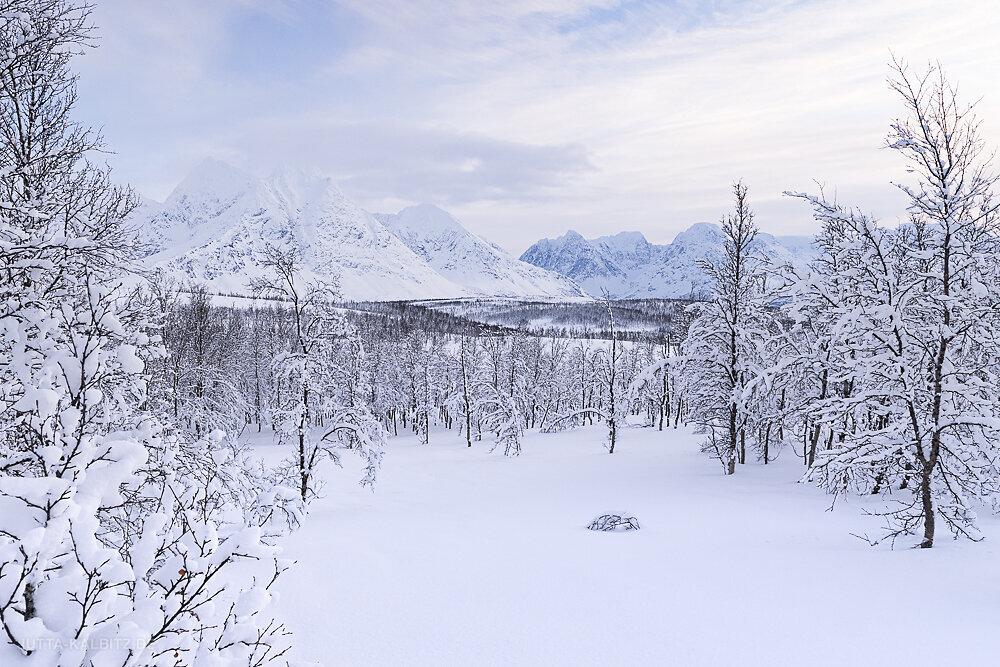 Blog-Norwegen-2020-4.JPG